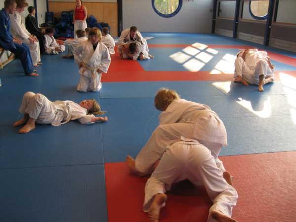 Vi träffades i Kaishos fina träningslokaler på fredagskvällen och hade en sista träning för att finslipa tekniker och brottas av lite tävlingsnerver.